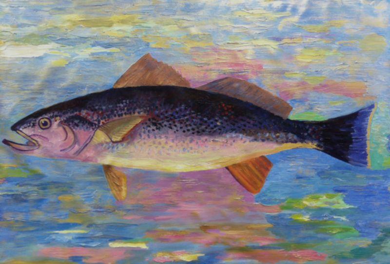 Sherryart Paintings By Sherry Miller Sausalito Artist