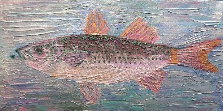 Sharon Johe Striped Bass
