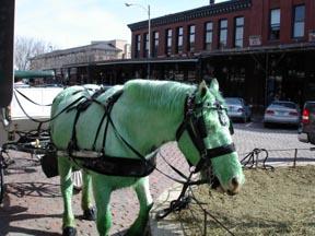 Nebraska_green_horse_2